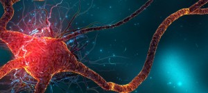 brain_artwork_cells_1920x1080_24208