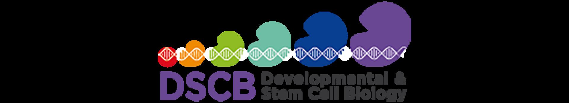 françois schweisguth developmental and stem cell biology