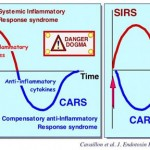 SIRS versus CARS: very soon after an insult, both pro-and anti-inflammatory responses are initiated concomitantly, rather than in two-wave process (Cavaillon et al. J. Endotoxin Res. 2001, 7, 85)