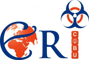 logo_ERI_2013