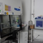 CELL CULTURE ROOM