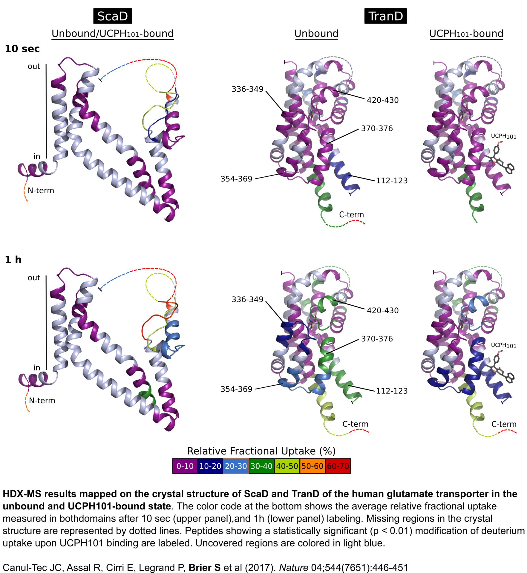Biological NMR Technological Platform