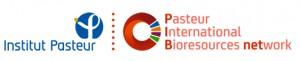 logo-PIBnet-institut-pasteur-2