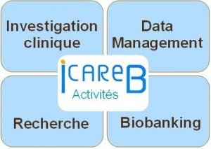 ICAReB Activités