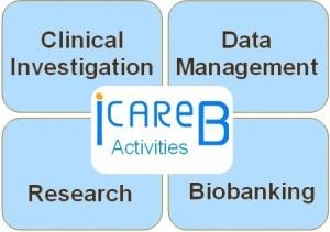 ICAReB activities