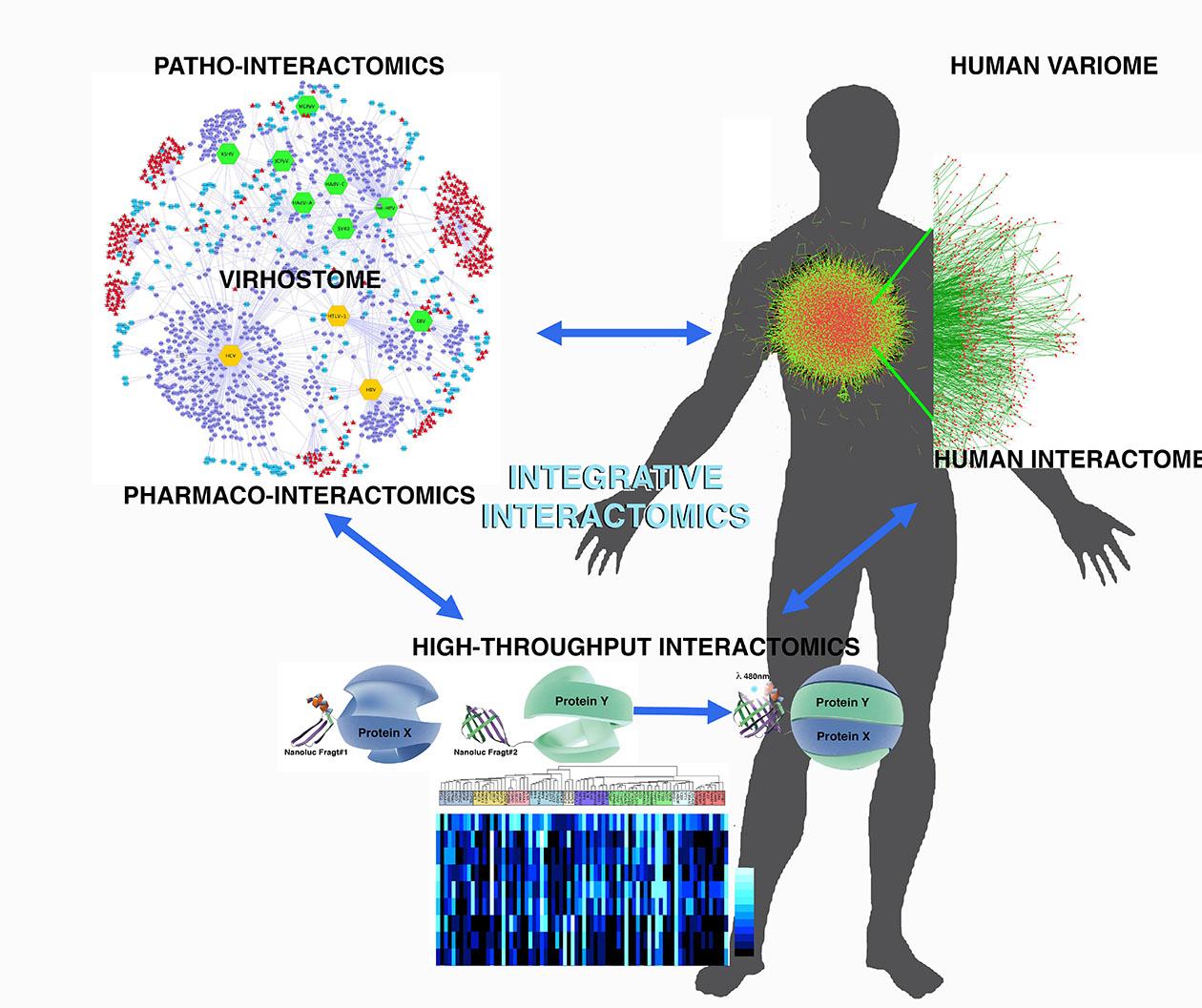 integrative-interactomics
