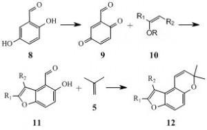 benzofurochromene 1