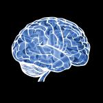 Microbe&brain-01