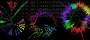 Evol_Bioinfo_Banner