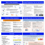 Poster gathering 6 basic cytometry memory aid : what is flow cytometry, controls in flow cytometry, sample preparation tip for cell sorting, antibody titration for flow cytometry, doublets and tandem dyes.
